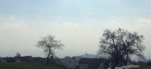 Lichtenberg2
